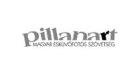 pillanart_logo_monokrom204x101